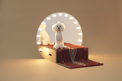 Konstantin Grcic, Architecture for Dogs: Paramount, 2012, Flat-pack furniture, 79 × 42 × 90 cm